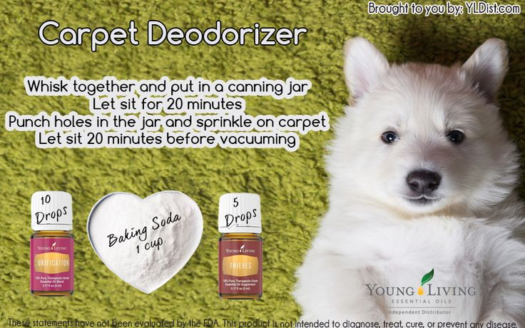 Carpet Deodorizer - Sprinkle, vacuum and you can immediately let your kids or pets play on the carpet without worry.