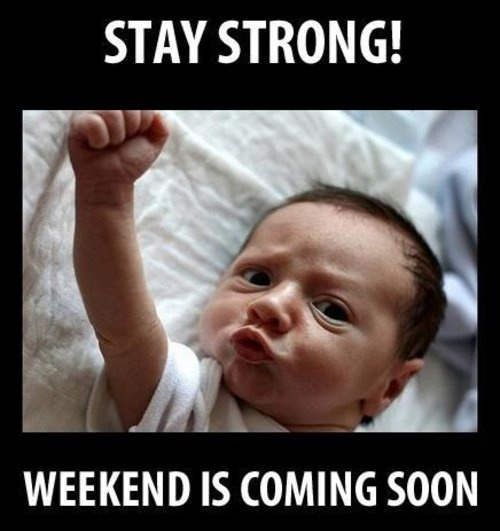 Stay Strong! Weekend is coming soon! funniesHappy Friday, Quotes, Stay Strong, Funny Pictures, The Weekend, Baby Memes, Come Soon, So True, Staystrong