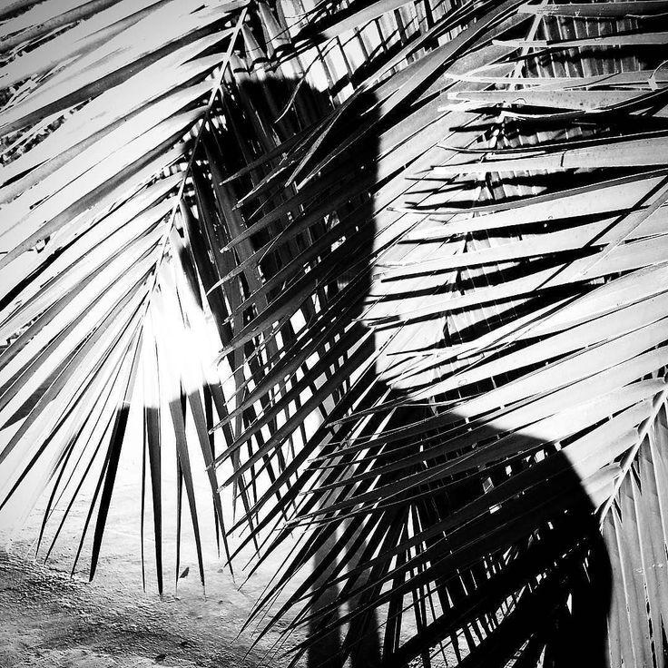 Hoy es día del #Fotografo en #Argentina y sus alrededores. Celebro re-publicando esta#foto la segunda seleccionada en el#BAMF2017( Buenos Aires Mobile Festival) categoría #Retrato - El sab 23 de septiembre en el Camarín de las Musas (Mario Bravo 956) inaugura la muestra y se anuncian los ganadores. Gracias de nuevo a@popckornmppor la selección. - #monochrome#blackandwhitephotography#bwphotography#instablackandwhite#blackandwhiteart#blackandwhiteonly #blackandwhite_perfection…