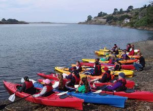 Kayak by the sea!  Water Treks Eco Tours and kayak rentals!  Next to the Jenner Visitor's Center.
