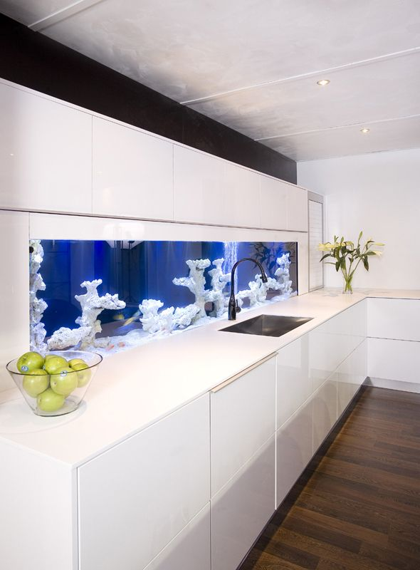 Cuisine au design contemporain et moderne. Cool Fish TanksUnique ...