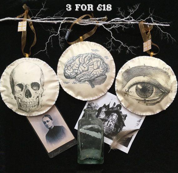 3 for 18GBP Anatomical Skull Brain and Eye by SHERWOODMADEUK