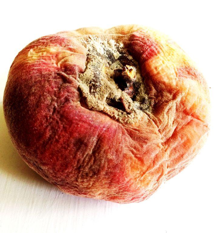 Mouldy peach