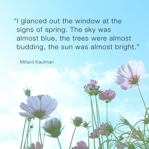 17 Best Images About Spring Quotes On Pinterest