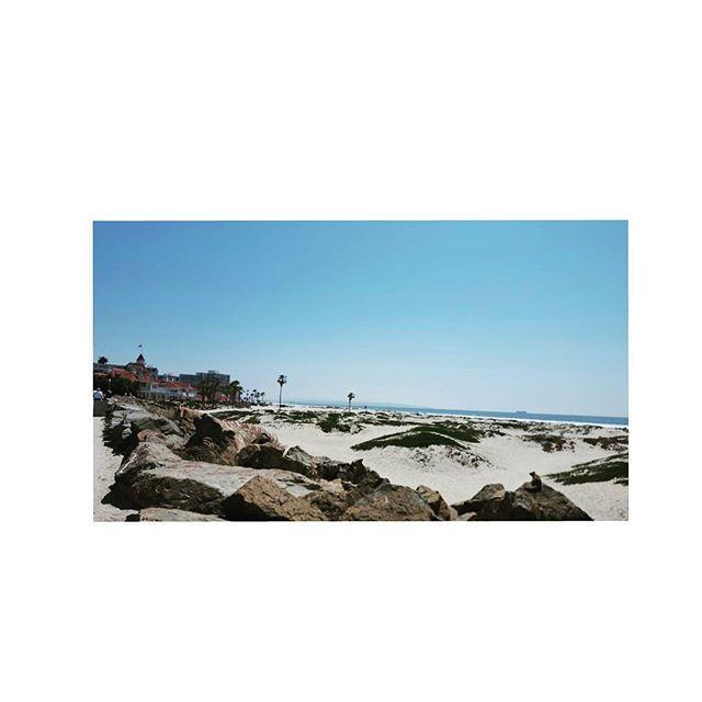 🌞🌊🐿 👣#SanDiego #solcal #california #coronado #delcoronado #beachlife #산책 #다람쥐팔자상팔자 #산책 #감사🙏 #sandiegoconnection #sdlocals #coronadolocals - posted by Claire_HE_Yang https://www.instagram.com/claire_yang__. See more post on Coronado at http://coronadolocals.com