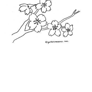 Pin Oleh Da Di Sketsa Sketsa Sketsa Hewan Gambar Bunga