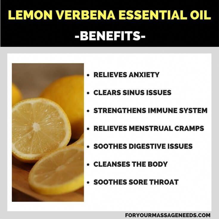 Lemon Verbena Essential Oil Health Benefits Listed Essential Oils Health Benefits Lemon Verbena Essential Oil Verbena Essential Oil