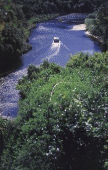 Boat Trips - Keurbooms River Ferries. Experience unsurpassed views of lush indigenous forest, soaring gorges, lyrical birdcalls. Qualified guides will identify the intricate workings of the unspoilt Keurbooms Nature Reserve. Or Hire a self-drive motor boat and explore at your leisure.