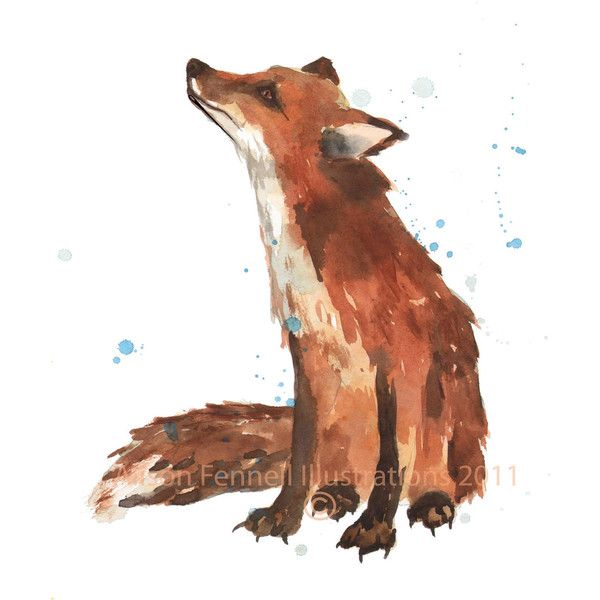 WATERCOLOR FOX Print, fox painting, fox art, animal lover gift, 8x10... (34 CAD) ❤ liked on Polyvore featuring animals, fillers, drawings, backgrounds, doodles, text, borders, quotes, picture frame i saying