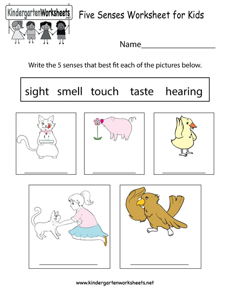 42 best Science Worksheets and More! images on Pinterest ...