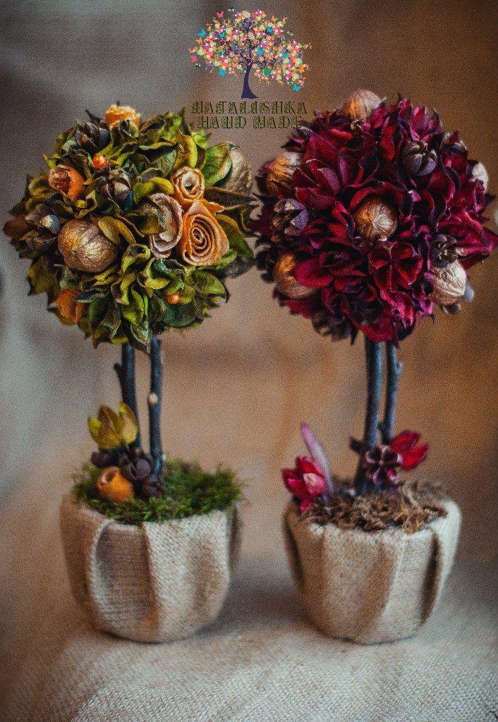 Ароматные деревья для вашего дома)))) Автор | Специалист по дизайну и декору
