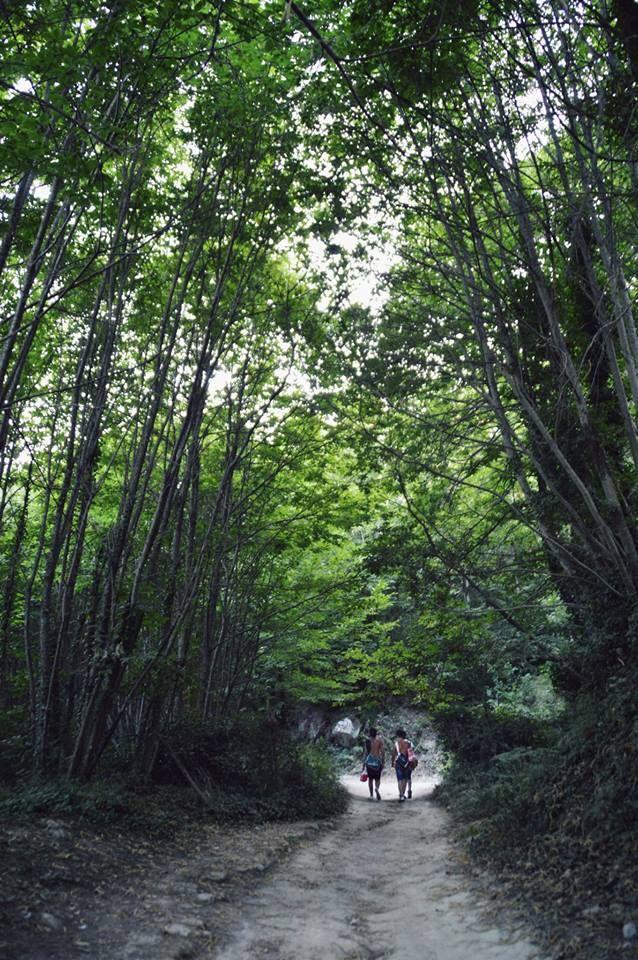 Sentiero che conduce al Monte #Epomeo. #ischia    Grazie a #ElenaIacono