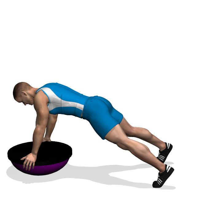 GLUTE KICKBACK STRAIGHT LEG ON BOSU INVOLVED MUSCLES DURING THE TRAINING GLUTES