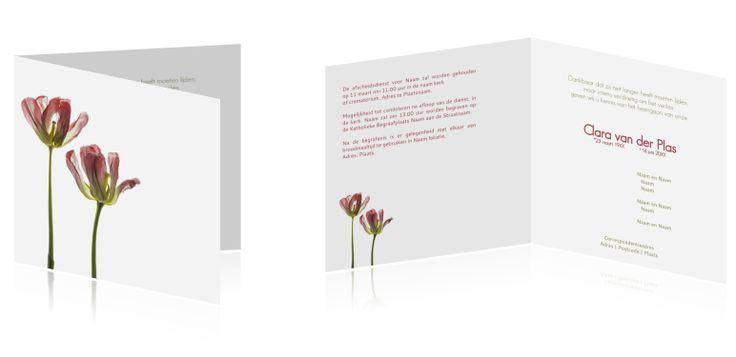 #Moderne #rouwkaart met #gedroogde #rode #tulpen.