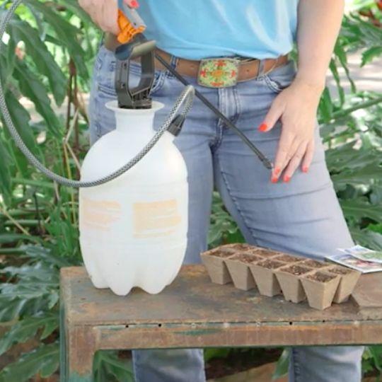 Seedling Watering Trick. Don't drown your seedlings! Get misty with this elegant watering tip.