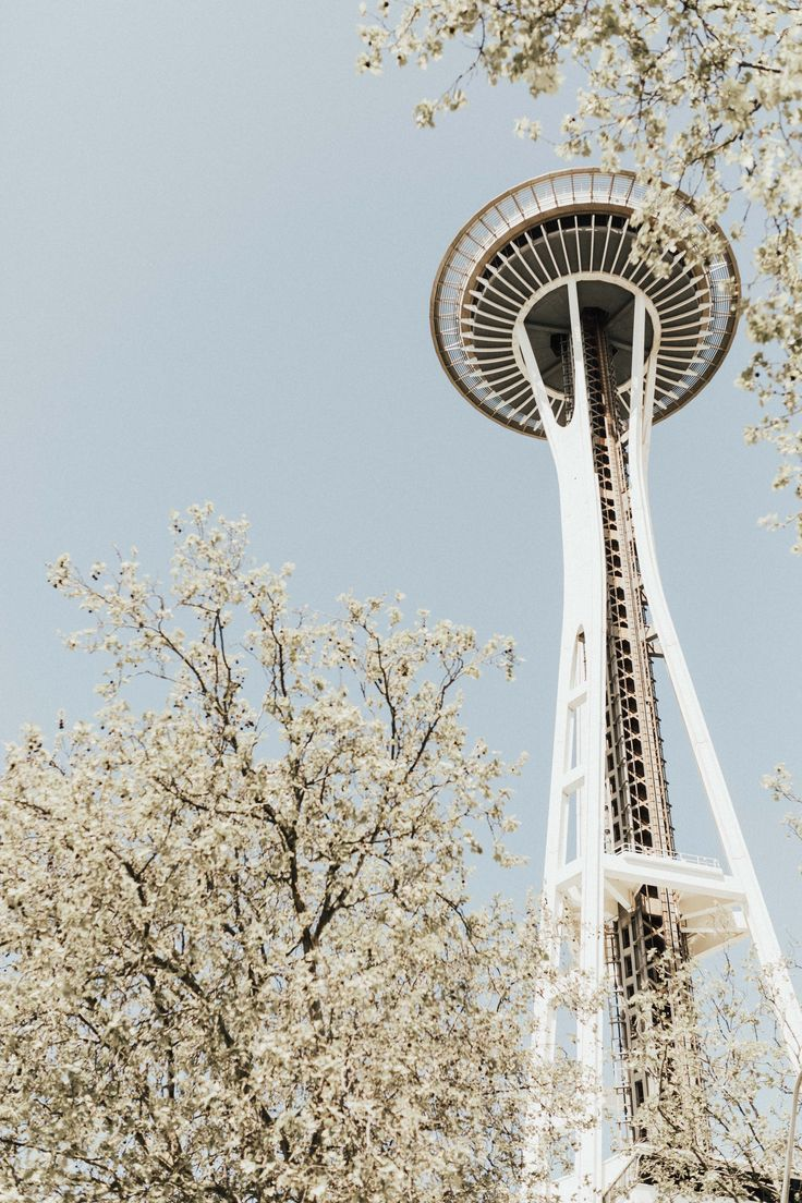 the ultimate highway 101 north travel guide: sacramento to seattle