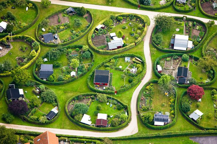 allotment garden plans - Google Search