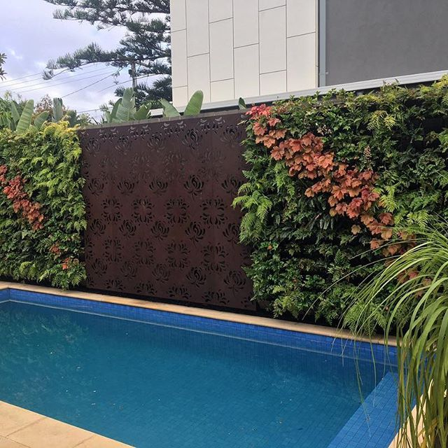 Decorative screen and vertical garden perfection for one happy client this week With Christmas approaching get your space ready for entertaining with one of our vertical gardens ✌ #papsverticalgardens #verticalgardens #verticalgarden #melbourne #melbournegardens #greenwall #livingwall