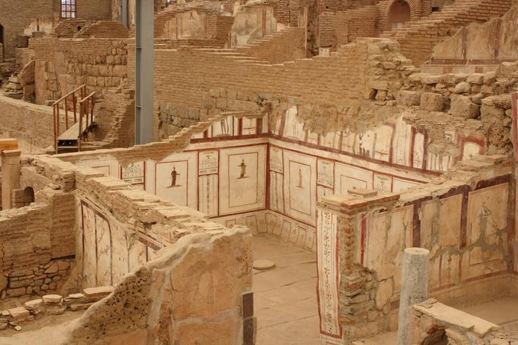 Ephesus,Turkey -  Terrace Houses 16
