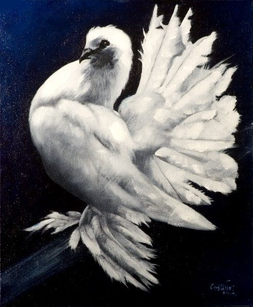 395 2010 Fantail Pigeon. Oil on canvas
