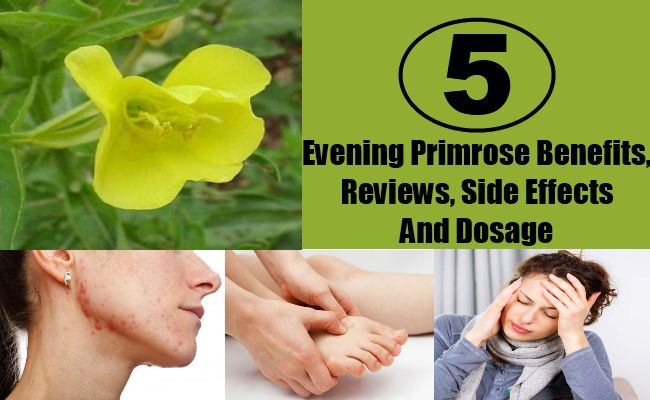 Evening Primrose Benefits, Reviews, Side Effects And Dosage