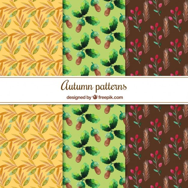Free vector Collection of watercolor autumnal pattern #22553
