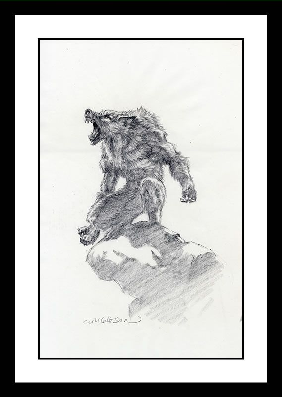 Werewolf Pencil Drawing by Bernie Wrightson   Awesome ...