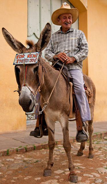 Donkey Business . Cuba