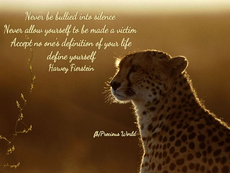 Never be bullied into silence. Never allow yourself to be made a victim.  Accept no one's definition of your life;  define yourself. ~ Harvey Fierstein ~  #Cheetah