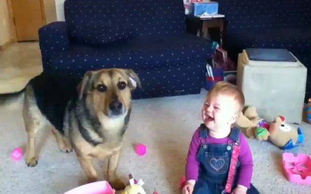 VIDEO DIVERTENTI - La bimba, il cane e le bolle di sapone: il video più amato dal web