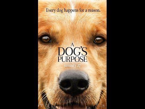 A Dog's Purpose (2017) | INDOMOVIE888