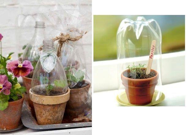 крышечки для рассады - поделки из пластиковых бутылок своими руками для сада
