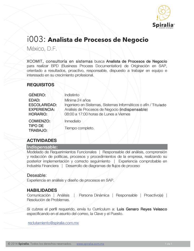 Analista de Procesos de Negocio