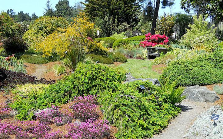 Mendocino Coast Botanical Gardens, Fort Bragg, CA - The Most Beautiful Public Gardens on the West Coast | Travel + Leisure