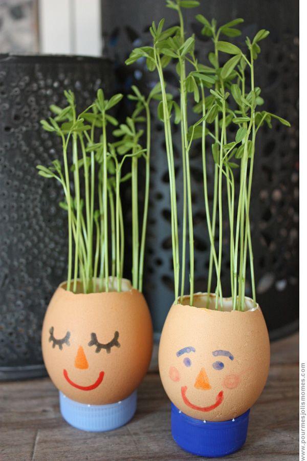 DIY: Eggshell planter #DIY, #Eggshell, #Planter