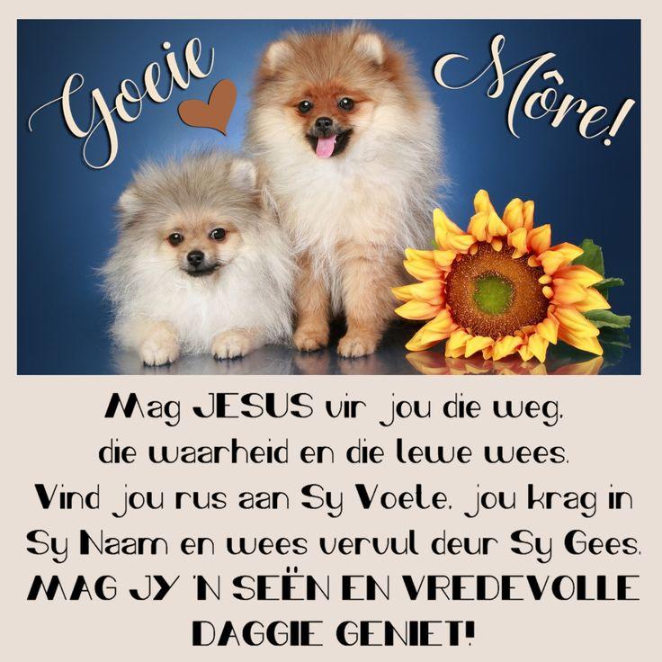 Goeie Môre! Mag JESUS vir jou die weg, die waarheid, en die lewe wees. Vind jou rus aan Sy Voete, jou krag in Sy Naam en wees vervul deur Sy Gees. MAG JY 'N SEËN EN VREDEVOLLE DAGGIE GENIET!