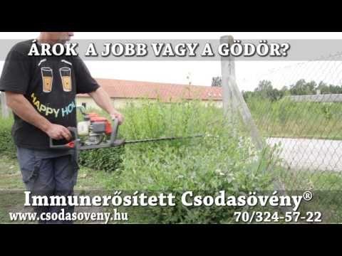 GyIK 34- Árok vagy gödör, mi jobb a csodasövény telepítéséhez? - YouTube