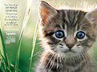 Sept 2014 - John 14:27 NIV Desktop Calendar- Free Monthly Calendars Wallpaper