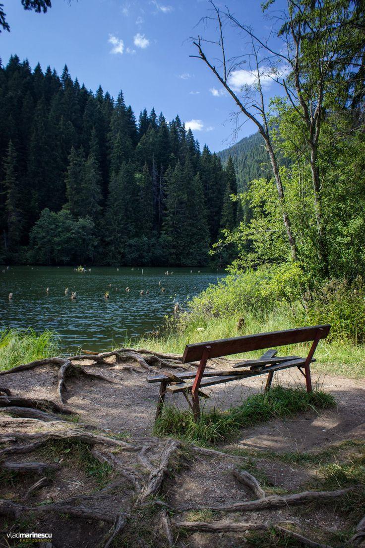 Lacul Rosu by Vlad Marinescu