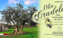 www.murgiadei.it https://www.produzionidalbasso.com/project/fiera-dellolio-extravergine-doliva/ #oliocapitale #crowdfunding