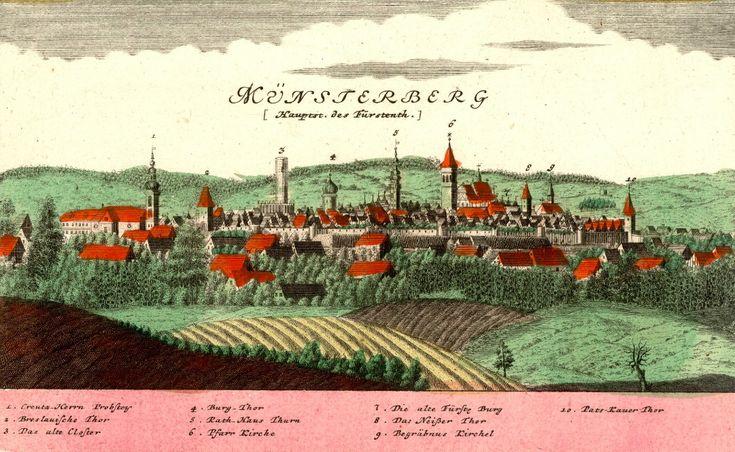 Ziębice (Münsterberg) - Rok 1738