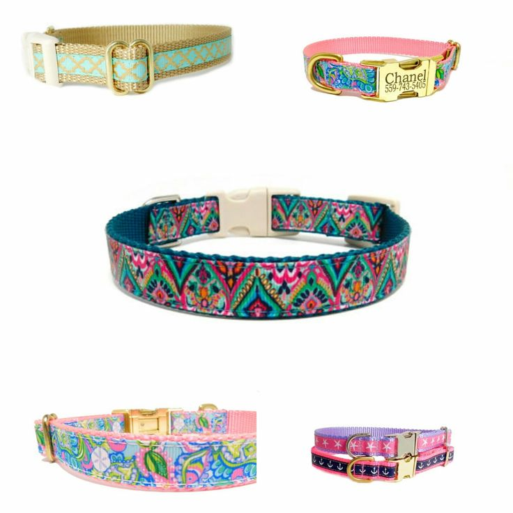 Custom Dog Collar, Leashes, and Harnesses