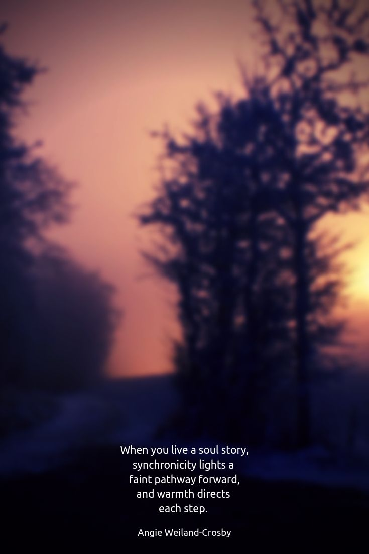 Soul Story Hollow Wood And The Heart Of Amber In 2020 Caption For Nature Good Instagram Captions Nature Quotes Inspirational