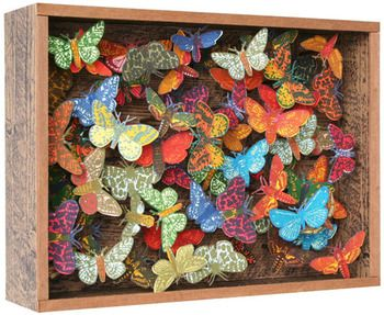 John Dilnot box framed butterflys - beautiful and slightly surreal