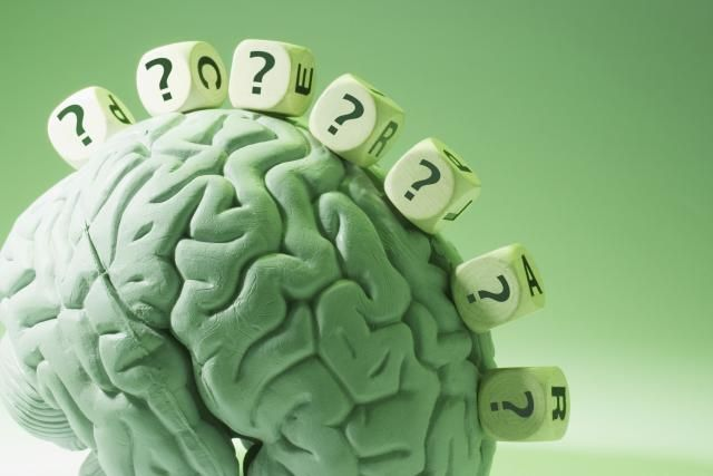Brain Plasticity: How Experience Changes the Brain