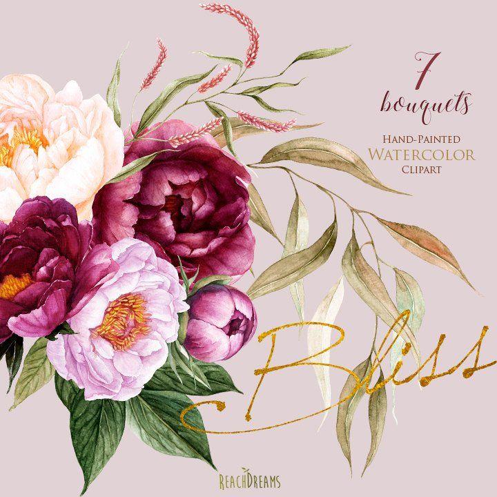 Pfingstrosen Blumen Aquarell Florale Elemente Bordeaux Violett