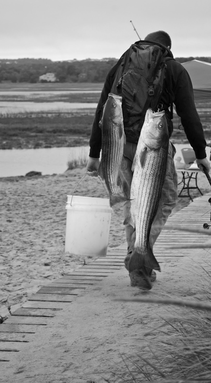 34 best outer banks fishing images on pinterest outer for Outer banks surf fishing tips