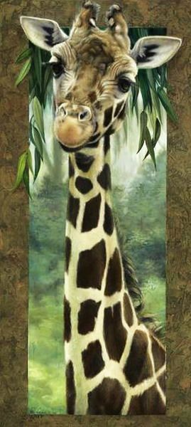 "Giraffe:  ""I like all of Nature's natural fashion accessories!"""