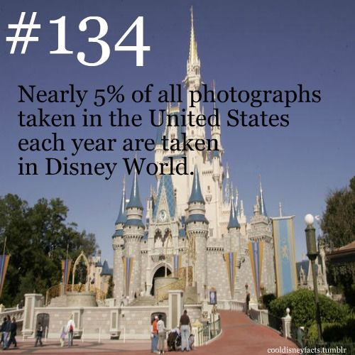 Nearly 5% of all photographs taken in the United States each year are taken in Disney World.  Submitted by: Melissa
