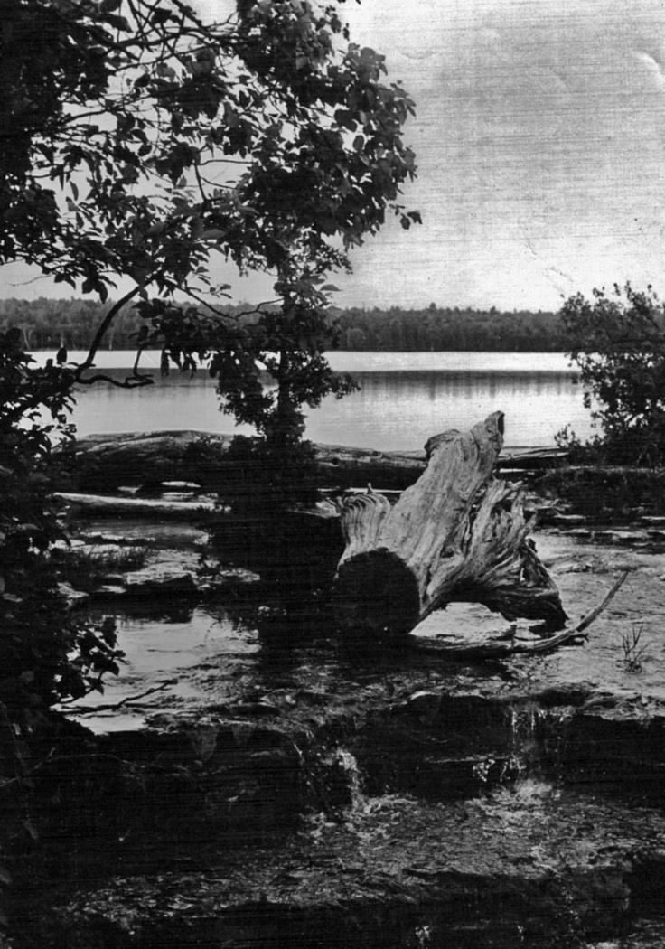 Saugeen River, Ontario.   © 1978 j. marshall craig